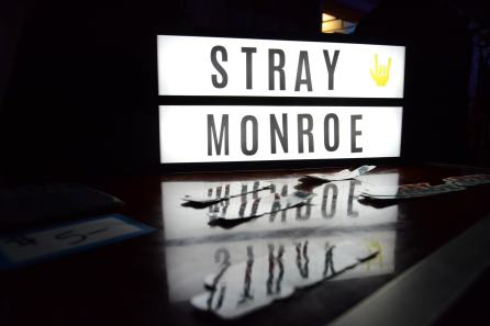 Stray Monroe sign at 710 Beach club on March 23rd by Joey Reams